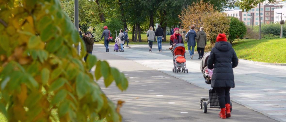 Петр Толстой возглавит рабочую группу для подготовки изменений в законодательство в сфере защиты прав многодетных семей